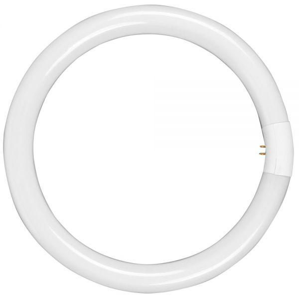 Walimex pro Ersatzlampe für Ringleuchte 75W