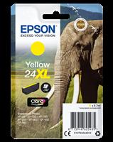Epson Tintenpatrone gelb C13T24344012 T2434 ~740 Seiten 8.7ml C13T24344010
