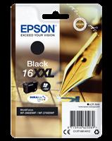 Epson Tintenpatrone schwarz C13T16814012 T1681 ~1000 Seiten 21.6ml C13T16814010
