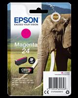 Epson Tintenpatrone magenta C13T24234012 T2423 ~360 Seiten 4.6ml