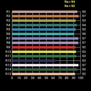 Falcon Eyes Bi-Color LED Lampe Set Dimmbar DV-300F2-K1 inkl. Akku