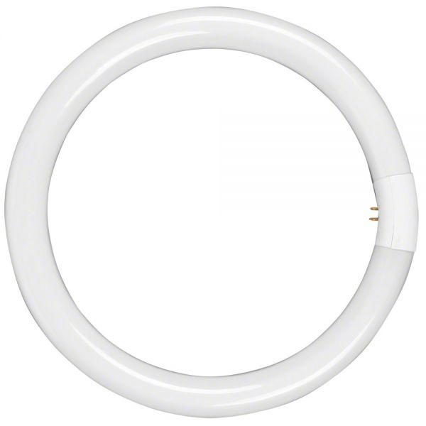 Walimex äußere Lampe 40W für Walimex Beauty Ringleuchte 90W