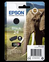 Epson Tintenpatrone schwarz C13T24214012 T2421 ~240 Seiten 5.1ml