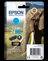 Epson Tintenpatrone cyan C13T24324012 T2432 ~740 Seiten 8.7ml C13T24324010