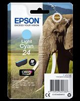 Epson Tintenpatrone cyan (hell) C13T24254012 T2425 ~360 Seiten 5.1ml
