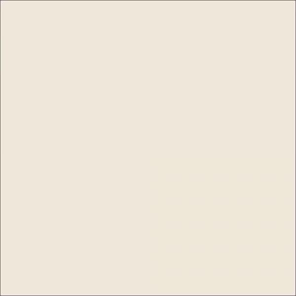 FONDALE CARTA BD PHOTO GREY / GRIGIO CHIARO 2,72x11m
