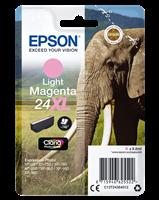 Epson Tintenpatrone magenta (hell) C13T24364012 T2436 ~740 Seiten 9.8ml C13T24364010