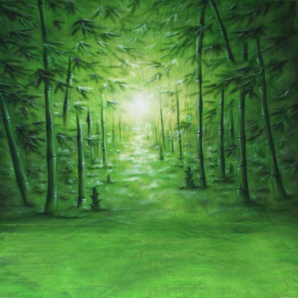 walimex pro Motiv-Stoffhintergrund 'Bamboo', 3x6m